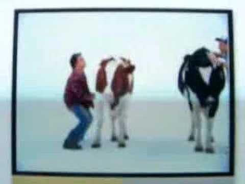 cow shake off youtube