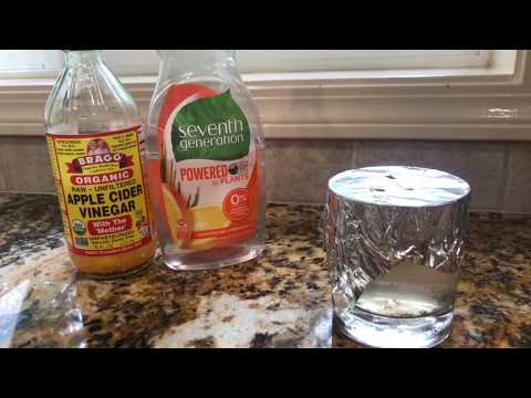 How To Make A Fruit Fly Trap