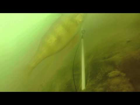 Ice Fishing Eagles Nest Lake