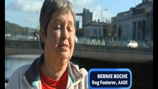 National Lottery Good Causes: Autism Assistance Dogs Ireland