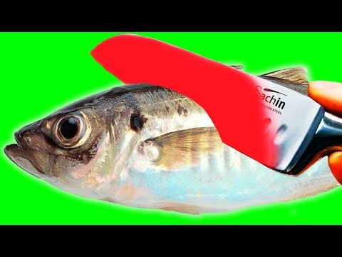 EXPERIMENT Glowing 1000 Degree KNIFE VS FISH SALMON