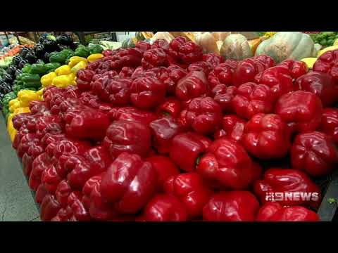Food Scanner | 9 News Perth