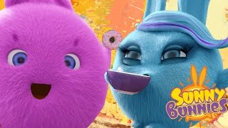 Cartoons for Children | Sunny Bunnies MAD TEA PARTY | Funny Cartoons For Children
