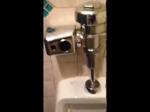 Downstairs men's urinal