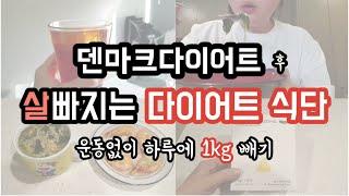 덴마크다이어트 후 살빠지는 보식 식단 |운동없이살빼기|…