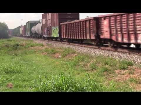 American trains defaced by bottom-feeders graffiti