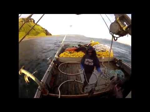 Sea King Summer 2015