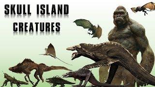 All Creatures of Skull Island Explained