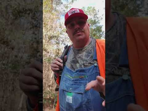 5 Tips When It Comes To Hunting Clubs.