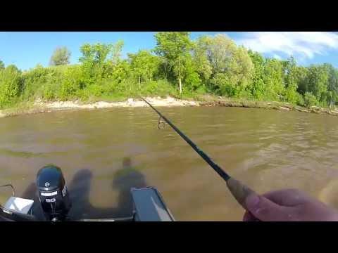 Red River Goldeye Fishing