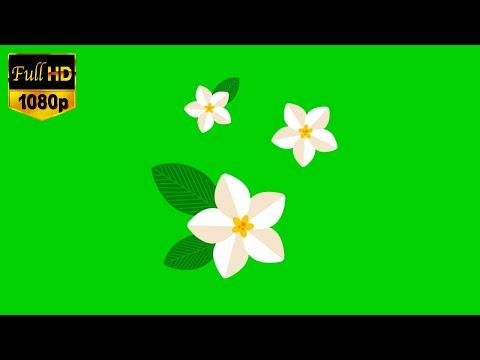 Green screen animation flowers। Green screen cartoon flower। Chroma Key flower effects। VFX flower