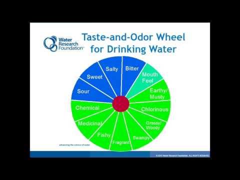 WRF Taste & Odor Expert Symposium -- 09-09-15 -- Gary Burlingame