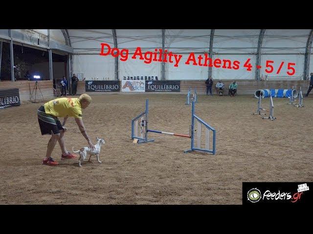Dog Agility Αθήνα May 2019 | Σκύλος άθλημα