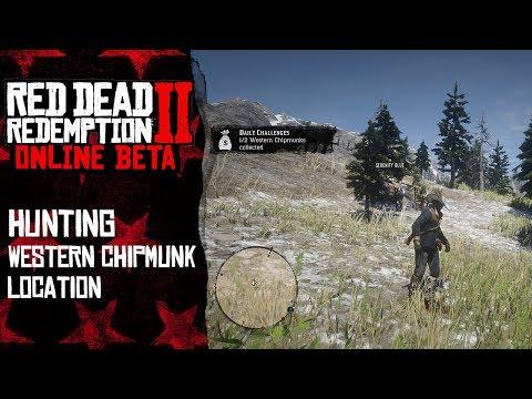 Western Chipmunk Location | Red Dead Redemption 2 Online thumbnail