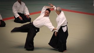 Endo Seishiro Shihan  - 53rd All Japan Aikido Demonstration (2015)