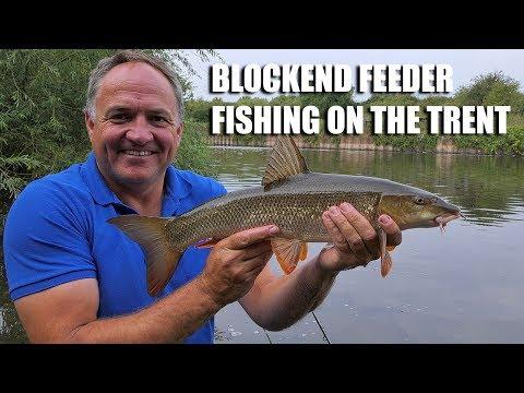 Blockend Feeder On The Trent
