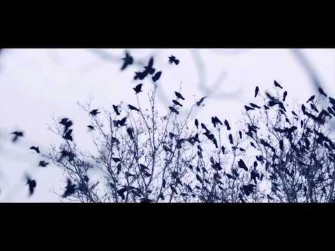 Trailer Love Story / Hasan Roza / LIFE STUDIO
