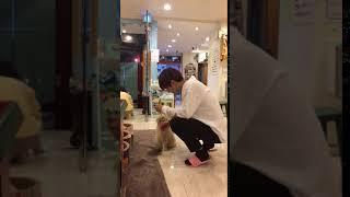 [동혁] 고양이카페에서 고양이 간식주기