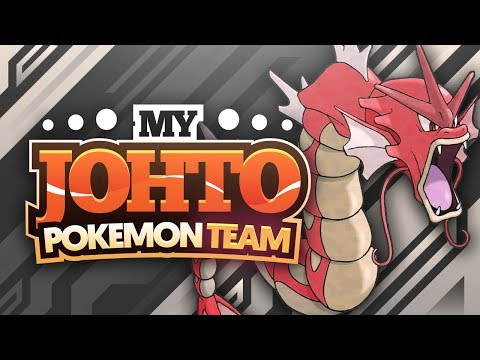 My Johto Pokemon Team