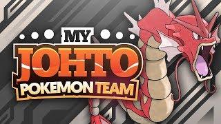 My Johto Pokemon Team