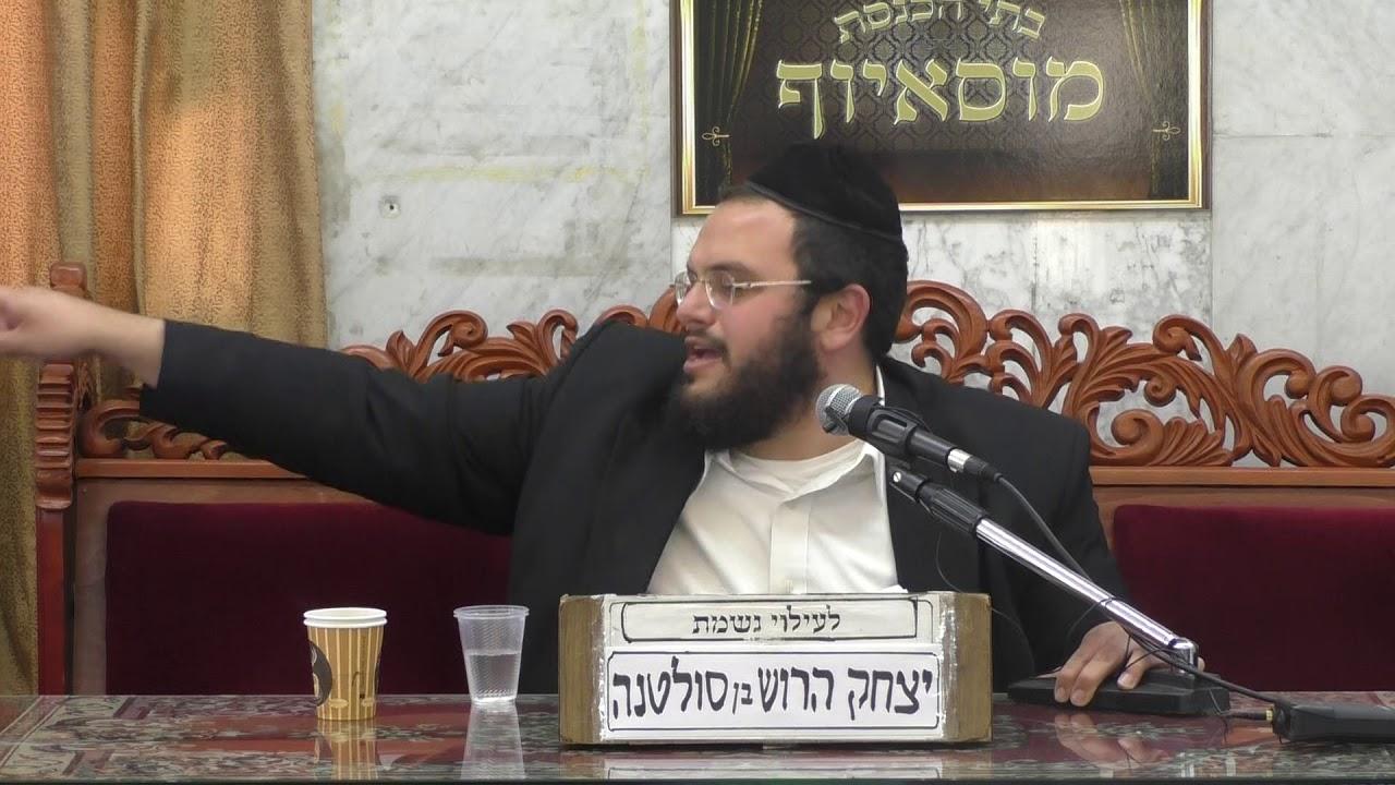 הרב אברהם מיימון פרה אדומה