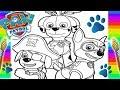 video infantil/cachorrinhos patrulha canina / desenho infantil / como pintar Marshall Chade e zuma /