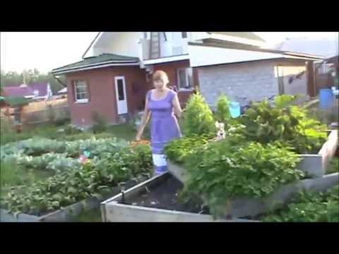 видео: В гостях у Аркасовой Галины