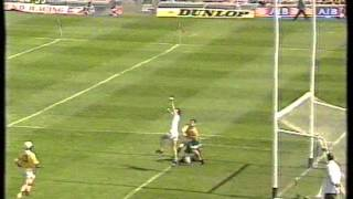 All Ireland Hurling Semi Final 1996 (5 of 7)