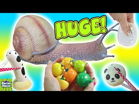Cutting Open HUGE Squishy Snail Toy! Snail GUTS Slime! Homemade Squeeze Toy Doctor Squish