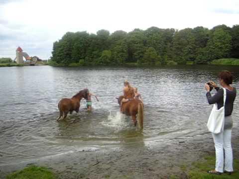 Paardenmeisjes zwemmen / little horse girls swim