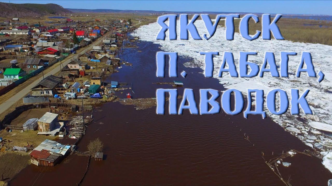 время, чтобы смотреть фото поселок табага четырнадцать дней телят