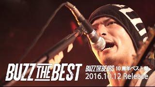 BUZZ THE BEARS - ALBUM「BUZZ THE BEST」初回特典映像ダイジェストトレイラー
