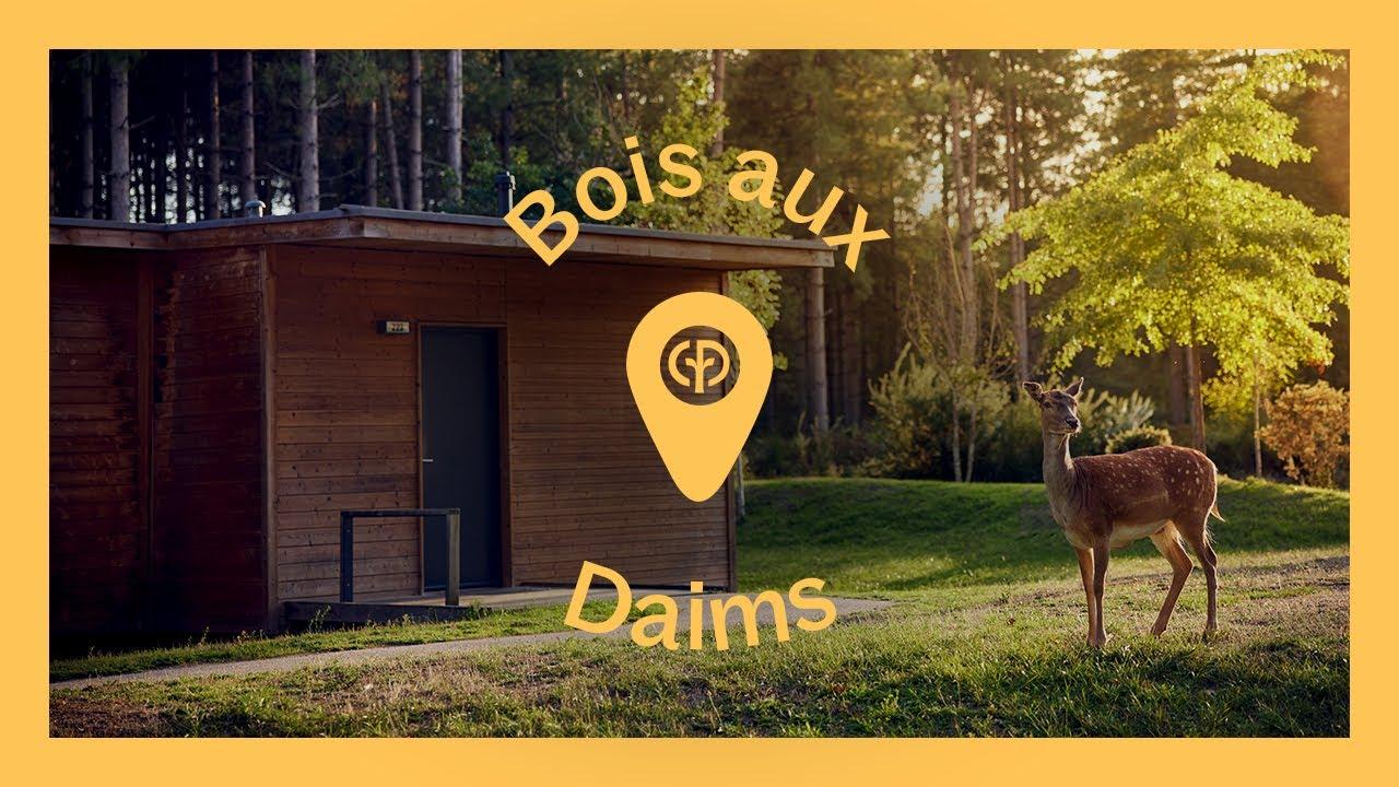 Découvrez le Domaine du Bois aux Daims Center Parcs YouTube # Le Bois Aux Daims Adresse