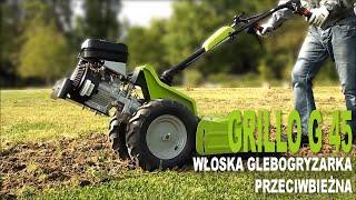 Grillo G 45 - włoska glebogryzarka przeciwbieżna (moc: 5,5 KM)