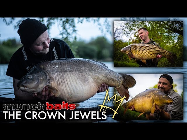 Munch Baits - The Crown Jewels