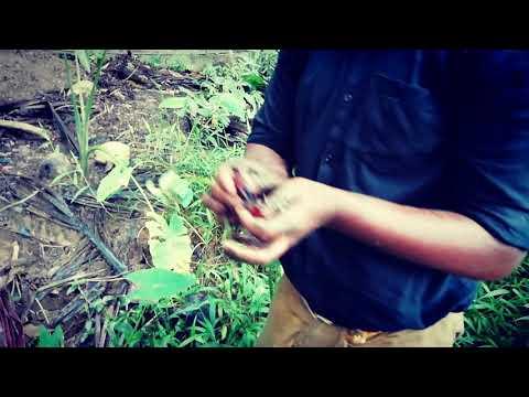crab hunting of man vs wild hero appus kuppakolly