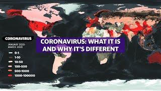 Coronavirus: Experts break down COVID-19