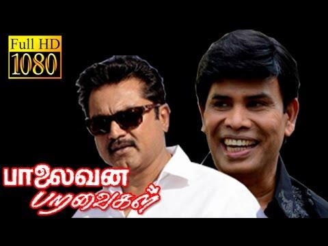 Palaivana Paravaigal   Sarathkumar,Anandaraj   Superhit Tamil Movie HD