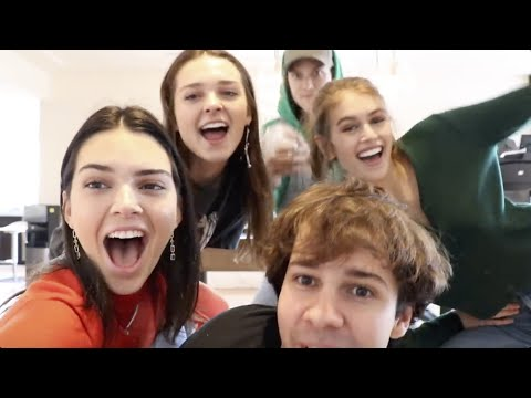 Best Celebrity Appearances in David Dobrik Vlogs (Kendall Jenner, Miranda Cosgrove)