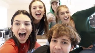 Best Celebrity Appearances in David Dobrik Vlogs (Kendall Jenner, Miranda Cosgrove)
