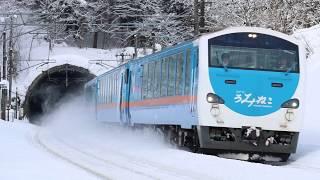 青い森鉄道 キハ48形8762D「リゾートうみねこ下北2号」 野辺地~千曳 2019年1月26日