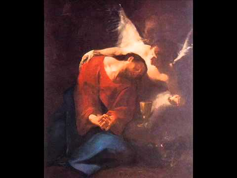 Jan Dismas Zelenka 1679 1745  Te Deum a due cori   YouTube