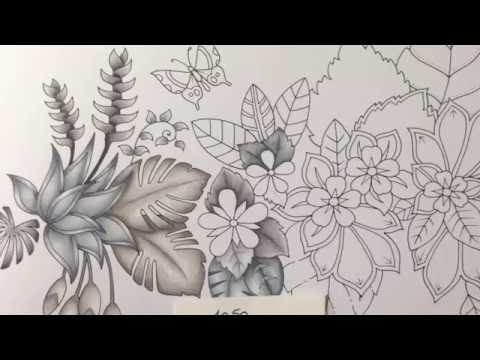MAGICAL JUNGLE - Johanna Basford - part 2 - prismacolor pencils - color tutorial