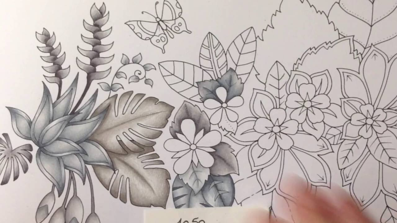 Magical Jungle Johanna Basford Part 2 Prismacolor