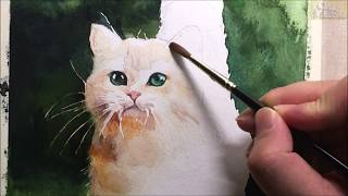 Watercolor animal painting of cat (speed & 5x painting)- 고양이 수채화 채색