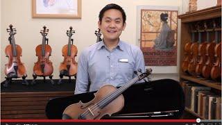 Beginner Violins Comparison - The Sydney String Centre