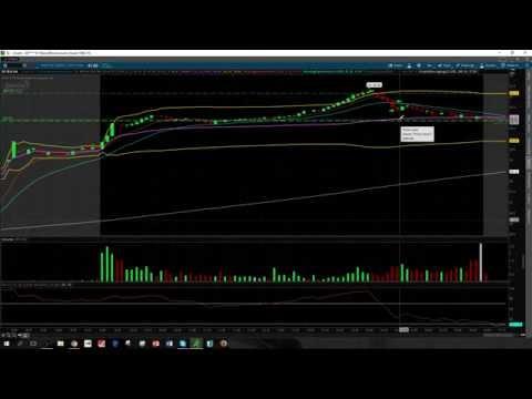 Trade Recap $LVS $CCL $SE