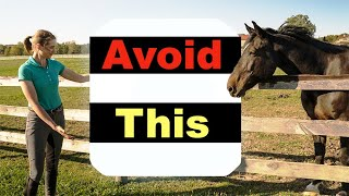 BEGINNER HORSE RIDING MISTAKES  TOP 10