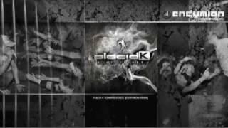 Placid K - Compagneros (Endymion remix)