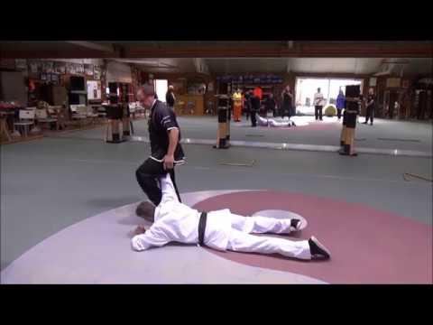 2 Grandmasters Walter Toch & Hubert Laenen in action 8 sept  2019